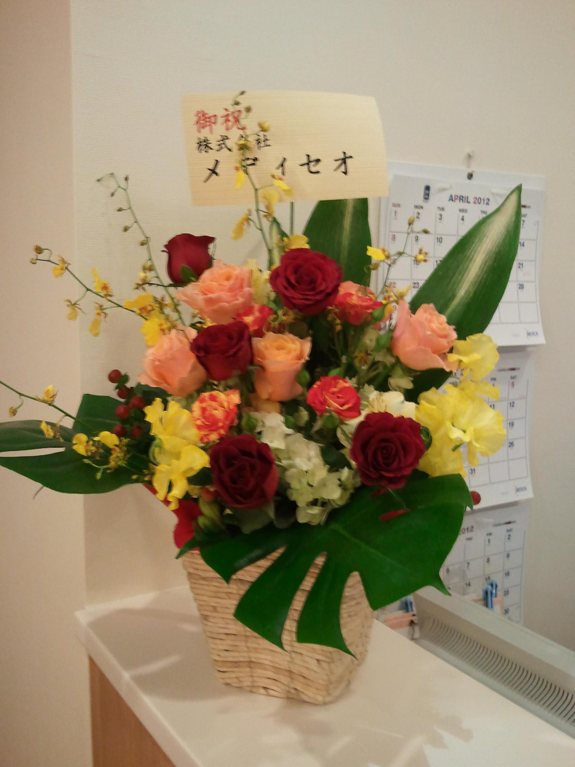 2012-04-02 17.09.23.jpg